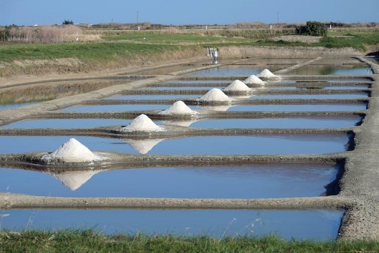 Des marais salants à Noirmoutier avec des tas de sel blancs. Patrick Despoix/Wikimedia, CC BY