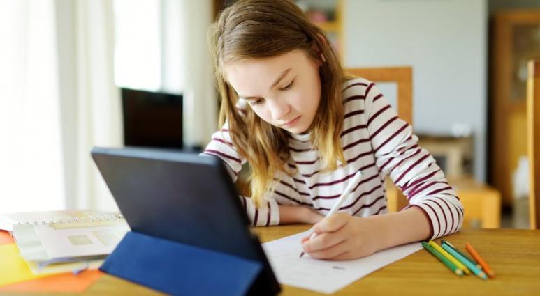 Certaines compétences numériques se construisent facilement à l'usage, d'autres requièrent le support d'activités d'apprentissage spécifiques. Shutterstock