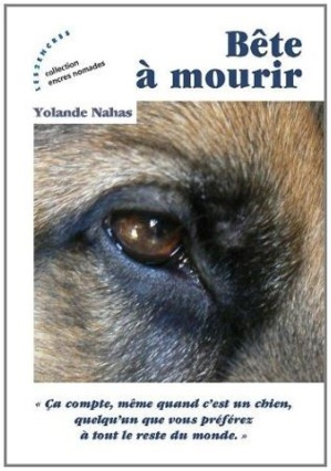 Cliquez ici pour commander le livre en promo
