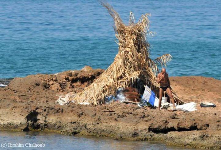 Seul sur son île! Photo (C) Ibrahim Chalhoub