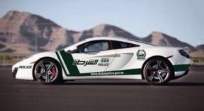 Photo (c) Dubai Police