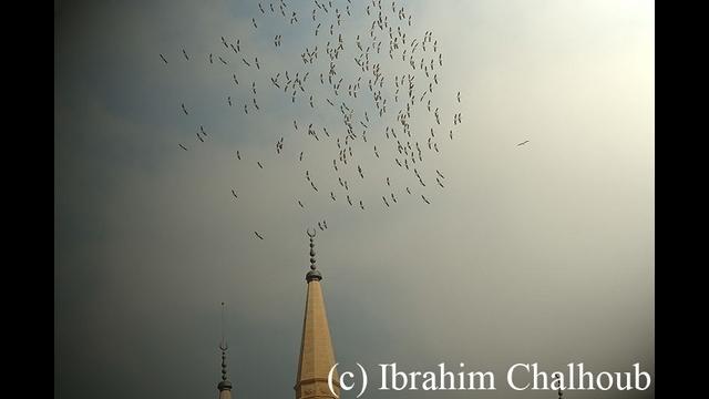 Nouvelle saison! Photo (C) Ibrahim Chalhoub