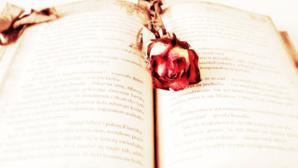 Cliquez ici pour choisir parmi les titres de la littérature sentimentale