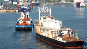 Le célèbre bateau de Cousteau, arrive a Concarneau pour sa restauration. Photo (c) Olivier Bernard
