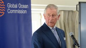 Photo (c) Global Ocean Commission. Cliquez ici pour accéder au site