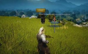 Cliquez ici pour commander des jeux MMORPG