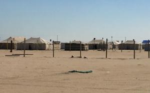 Campement réunissant une famille koweïtienne nombreuse, dans la partie sud du désert. Photo (c) Bulent Inan