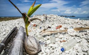Plage de Rodrigues, au large de l'Ile Maurice. Photo (c) Race for Water. Cliquez ici pour accéder au site officiel