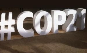 La COP21 a permis de découvrir de nouvelles formes de financements durables. Photo © LLF