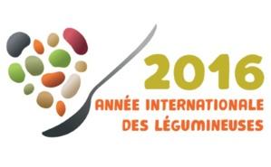 Le logo de l'année des légumineuses (c) FAO. Cliquez ici pour accéder au site officiel
