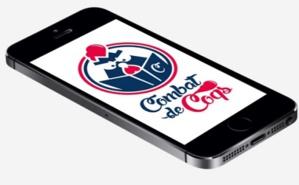 Combat de coqs: duel sur la culture française. Photo (c) Combat de coqs.