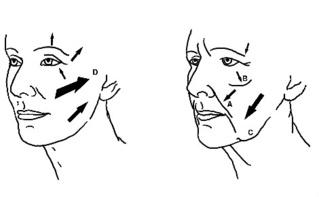 Illustration (c) GBdeZeeuw
