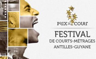 L'affiche du Festival Prix de Court 2016. Cliquez ici pour accéder au site