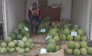 Le contrôle des limites maximales de résidus de pesticide dans les aliments est de la responsabilité de l'Etat. Photo (c) Florence Esther