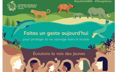 Cliquez ici pour télécharger la brochure CITES