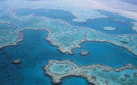 Photo aérienne de la Grande Barrière de corail située au large de l'Australie. Image du domaine public