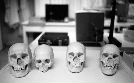 Crânes humains à l'Institut de recherche criminelle de la gendarmerie nationale (IRCGN). Photo (c) Paucal