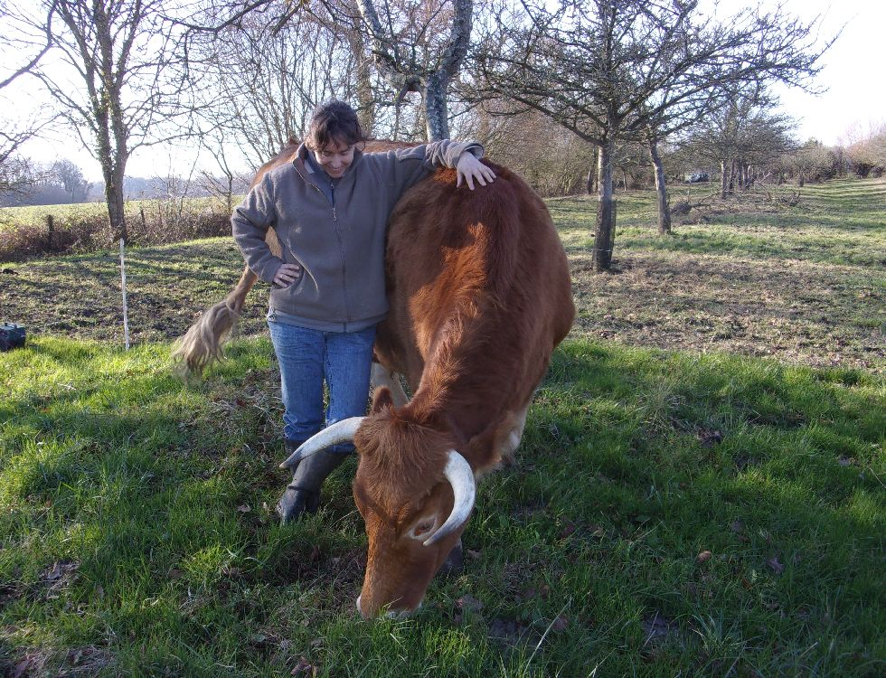 Katell Lorre et l'une de ses vaches Froment du Léhon. (c) Carine Pauchard.