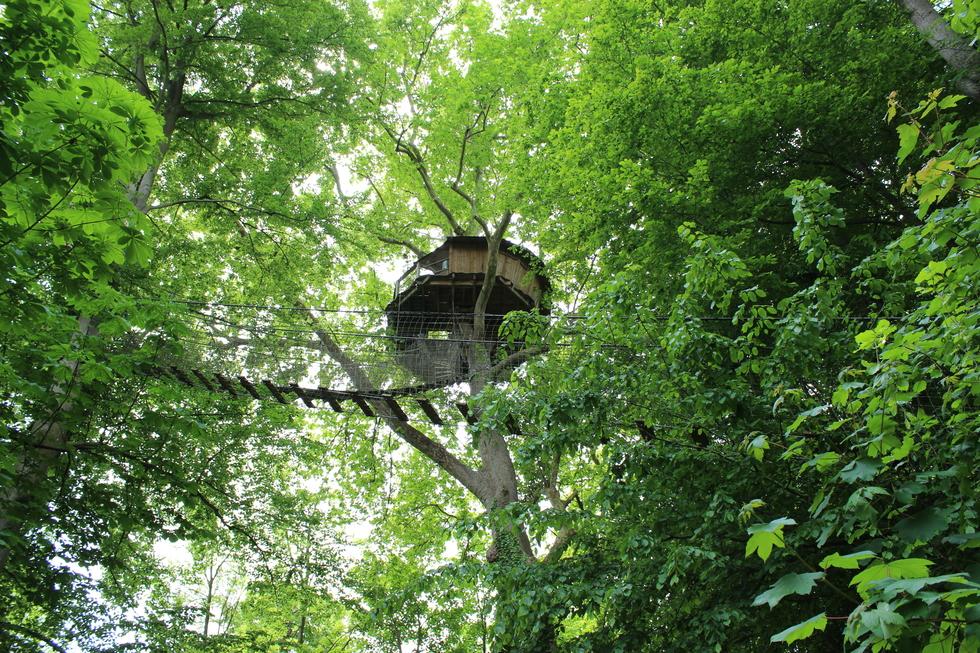 """Cabane """"Nid d'aigle"""" nichée à 22 mètres du sol. © J. P."""