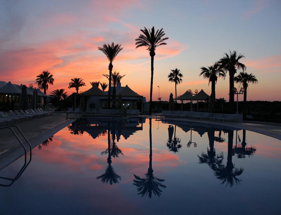 La Tunisie : ses palmiers, ses plages... et ses cliniques de chirurgie esthétique. Photo (c) Alex Sky - Pixabay