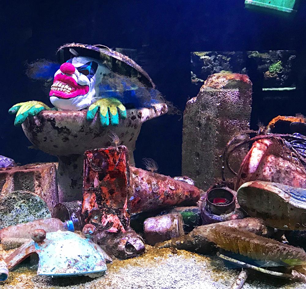 Protégeons les océans! bassin de sensibilisation aux polutions humaines des fonds marins. Photo (c) Charlotte Longépé.