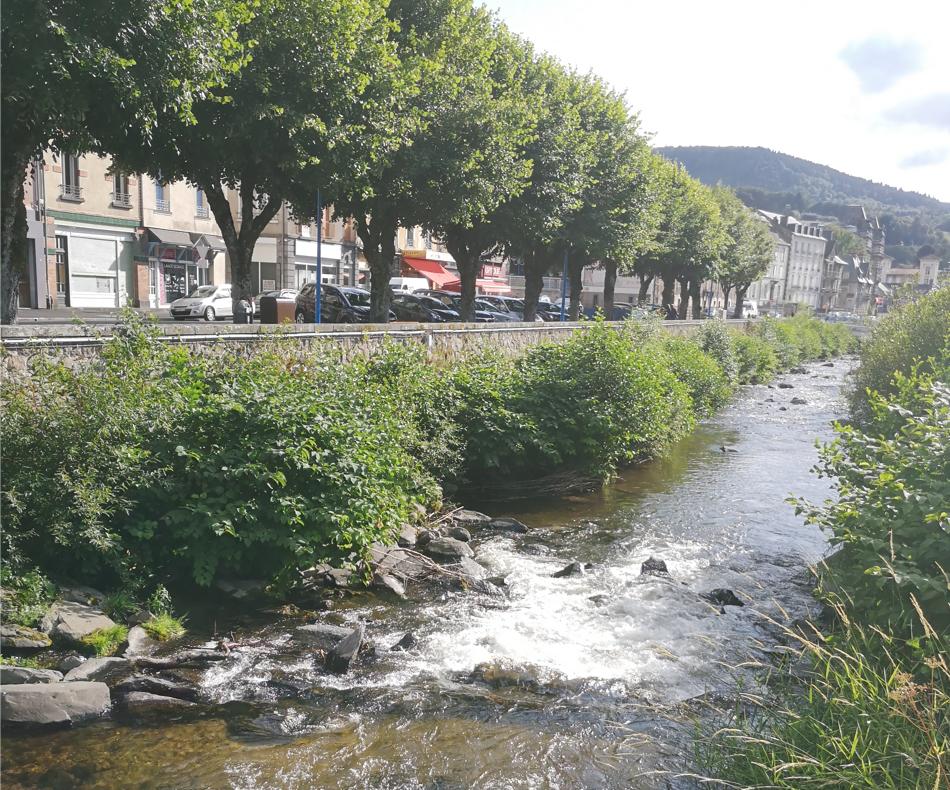 """La Bourboule, située en moyenne montagne (852 m d'altitude), est située dans la Vallée de la Haute Dordogne est une ville thermale qui a obtenu le statut de commune autonome. Après avoir connu """"la guerre des puits"""" entre deux grandes familles de la ville, elle est devenue une importante station de soins pour les enfants."""
