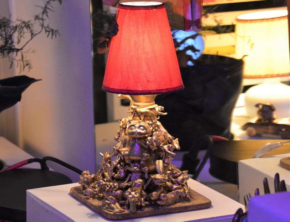 Lampe accumulation (c) Frédérique Gelas