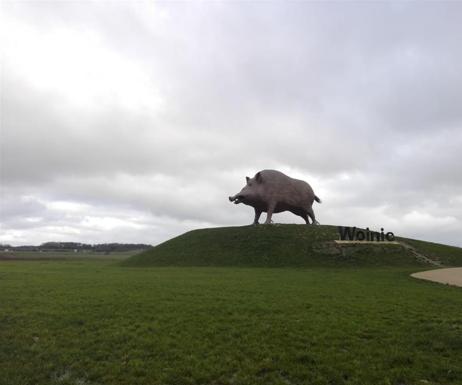 Woinic, célèbre sanglier des Ardennes réalisé par le sculpteur Eric Sleziak mesure 8,5m de haut et 14m de long. Il incarne l'animal symbole de la région / (c) E.V.
