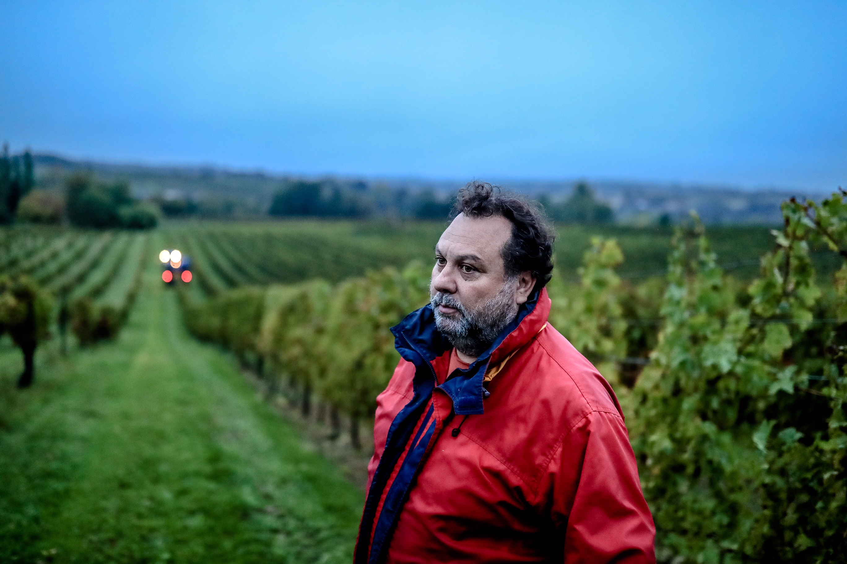 Laurent Cassy dans son vignoble de Château Chillac - Photo©Guillaume Bonneau