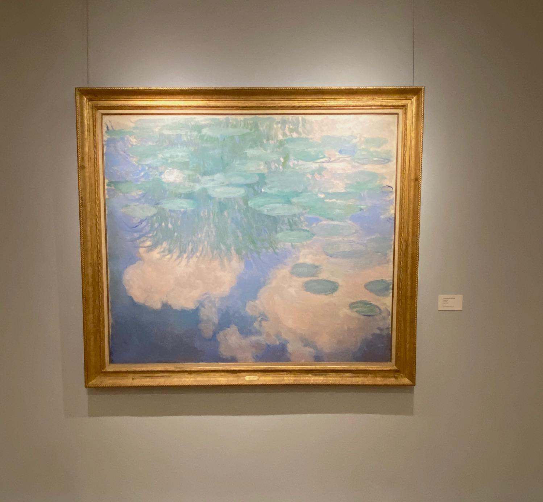Nympheas de Claude Monet (c) Maxime Delahousse