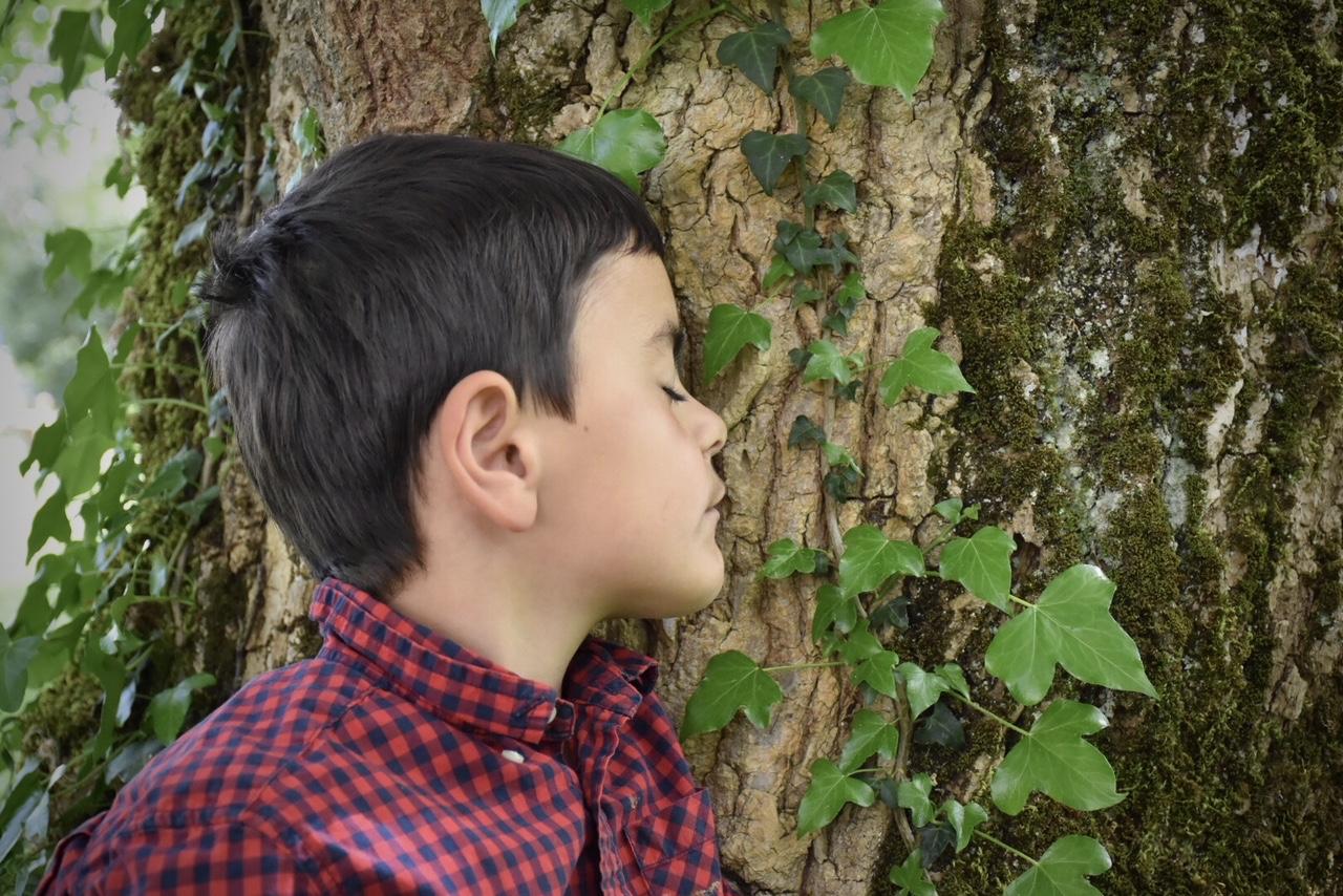 Découvrir un arbre par les sens. Photo © A.Gléonec