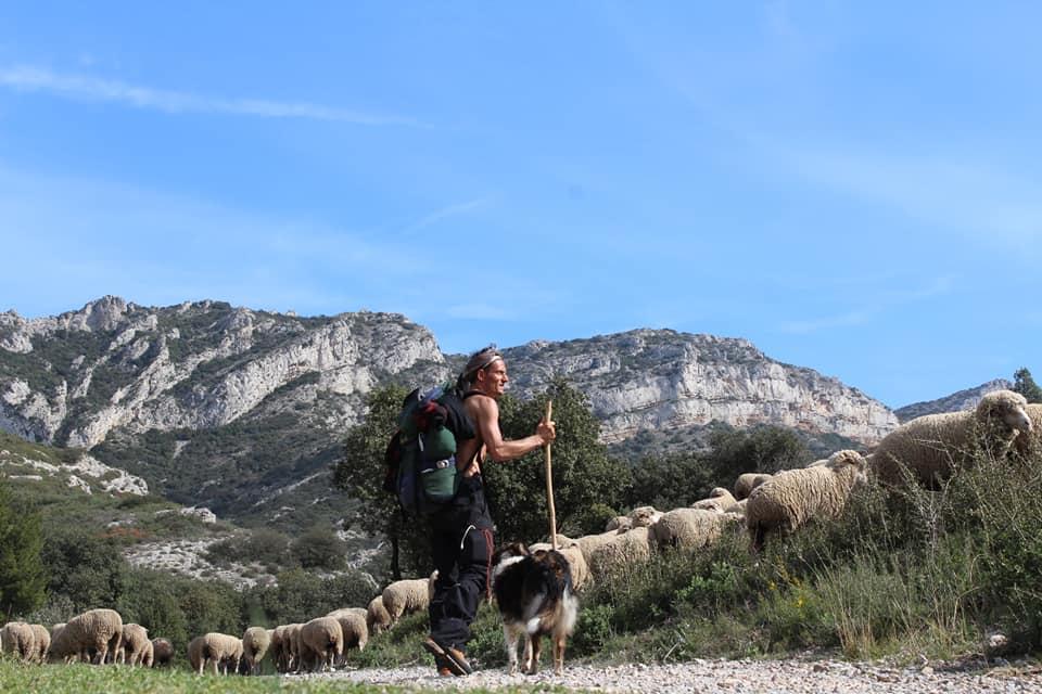 Patrice Ponza est aujourd'hui berger transhumant dans les Alpilles - (c) Patrice Ponza