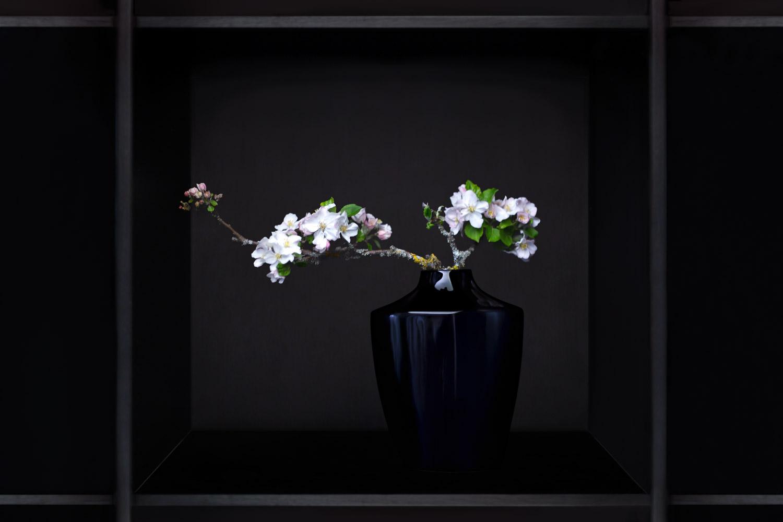 Extrait de la série Ikebana. Photo © Valérie Servant