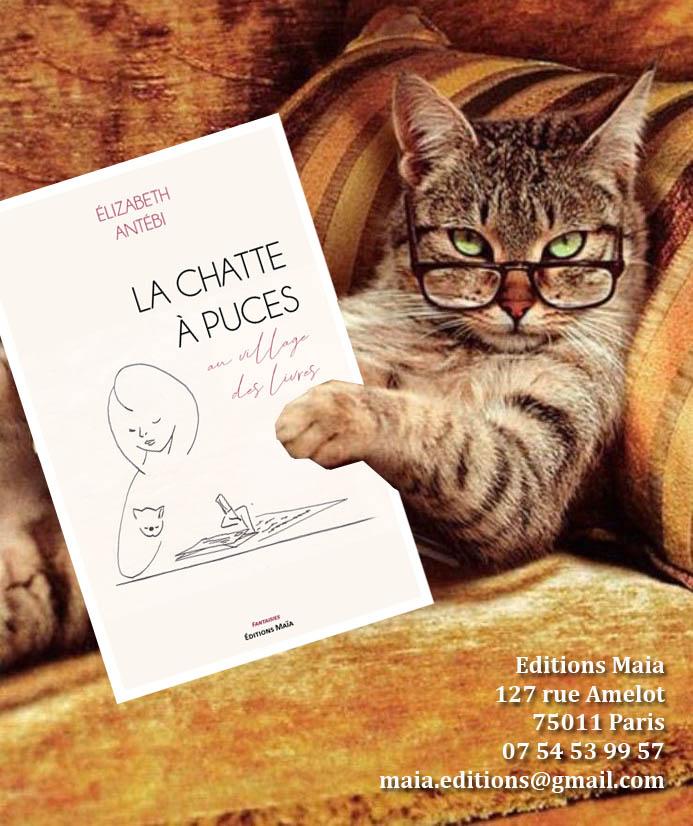 """""""La Chatte à Puces au village des livres"""", une satire de plusieurs mondes condensés dans un livre (c) EA"""