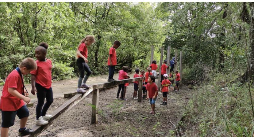 """""""Passer du temps dans la nature est essentiel au bon développement de l'enfant"""". (c) école beraca."""