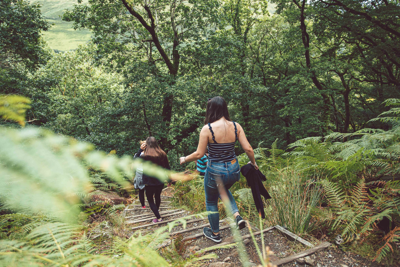 Lors des promenades en forêt, mieux vaut porter des vêtements couvrants de couleur claire, pour mieux repérer les tiques. Steffan Mitchell / Unsplash