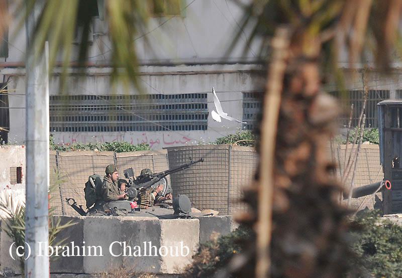 La paix! Photo (C) Ibrahim Chalhoub