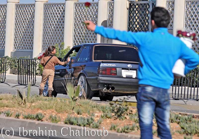 Une rose pour ton amour! Photo (C) Ibrahim Chalhoub
