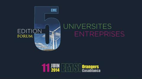 Les énergies renouvelables: Défis de l'intégration et des projets collaboratifs d'innovation