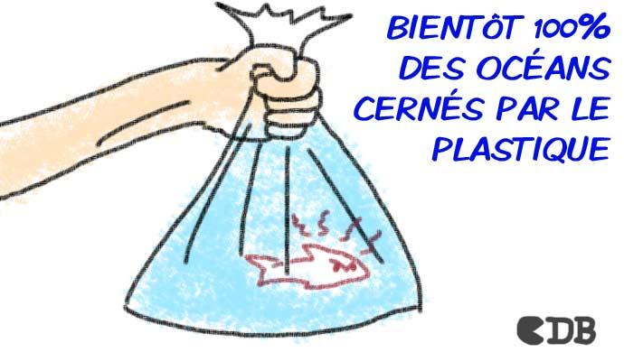 (c) CDB