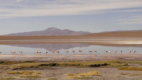 Salar de Uyuni, lac salé, sud Bolivie. Photo (c) Florence Renault