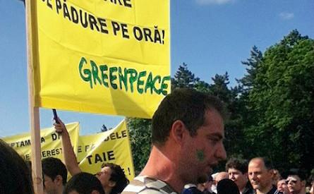 Photo: Adriana Radu. Cliquez ici pour accéder au site officiel de Greenpeace Roumanie