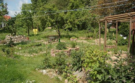 Le principe de la permaculture: assortir les différentes plantes ensemble. Photo (c) PermaKulturgut