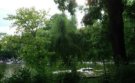Le parc Cismigiu. Photo (c) Adriana T. Radu