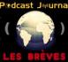 https://www.podcastjournal.net/notes/Reapparition-d-un-dessin-de-Klimt_b20190959.html