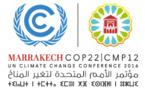 COP22, la réunion de l'action - 2