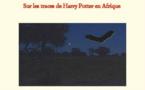 Un livre sur les traces de Harry Potter en Afrique