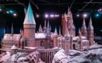 Marathon Harry Potter au cinéma