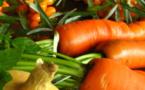 L'agriculture bio, où en est-on vraiment?