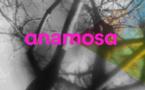 Anamosa, une maison d'édition qui vous veut du bien